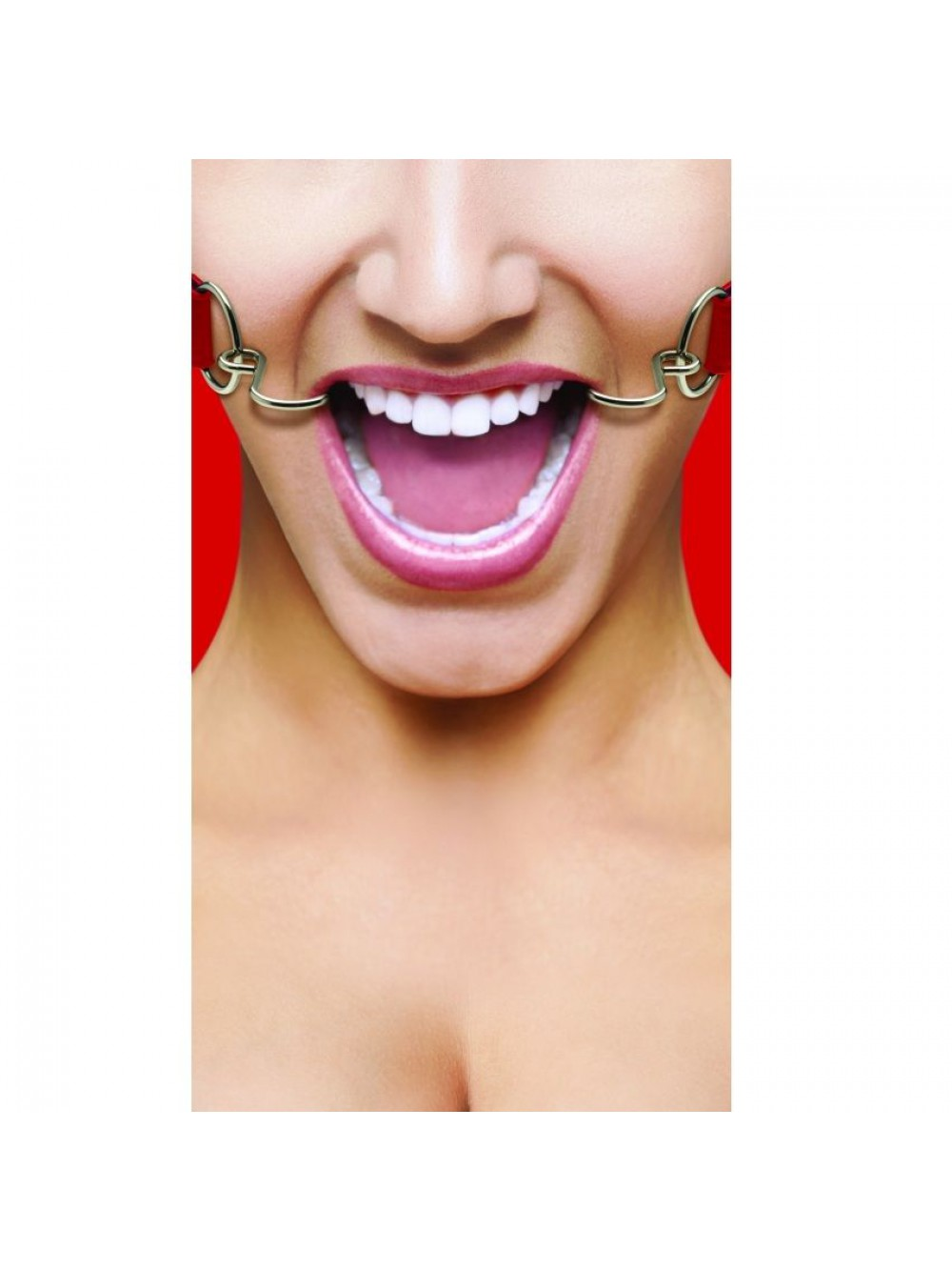 OUCH HOOK GAG RED 8714273951717