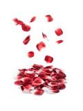 LES PETITS BONBONS ROSE PETALS EXPLOSION 8437008001333